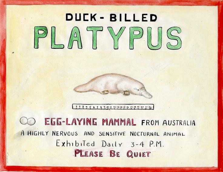 1949-Platypus-Sign-Mockup