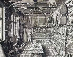 The frontispiece of Ole Worm's collection catalogue 'Museum Wormanium' (1655). Spot the narwhal tusk!