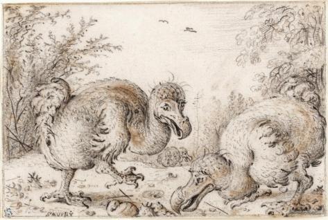 Roelandt Savery, c.1626, Crocker Art Museum